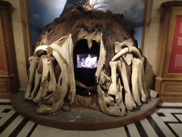 zelt mammut