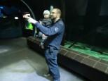 Papa und Tom im Aquarien-Tunnel