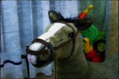 Das Pferd mit der rosa Schnauze