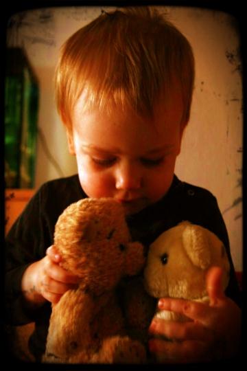Tom und seine Teddybären (#Photo)